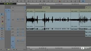 19. Muting, Monitoring and Audio Scrubbing