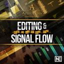 AudioPedia 107 - Editing and Signal Flow