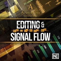 AudioPedia 107Editing and Signal Flow Product Image