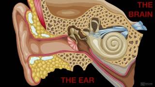 18. Human Hearing & Limits