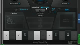 3. Auto-EFX Controls