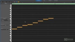 20. Parallel vs. Diatonic Harmony
