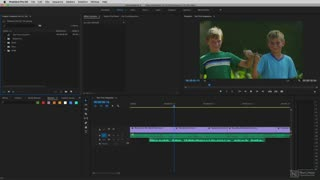 Premiere Pro CC 103: Working with Effects - Preview Video