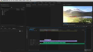16. Exporting for DaVinci Resolve