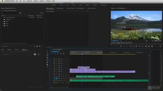 6. Exporting Still Images
