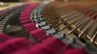 4. Harmonic Sound