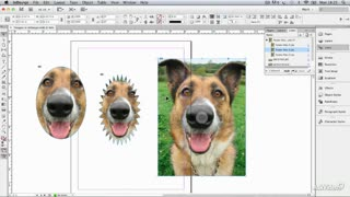 19. Reshaping Image Frames with the Pen Tool