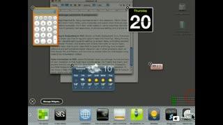 72. Managing Widgets