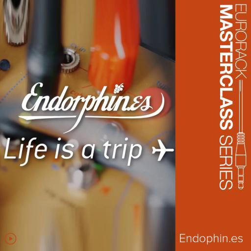 Endorphines Masterclass: Endorphin.es Life is a trip ✈ with Todd Barton