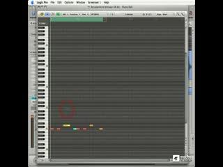 84 Step Recording