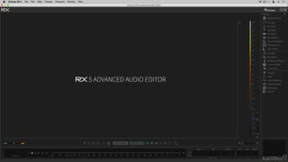 iZotope RX 5: Audio Repair for Musicians - Preview Video