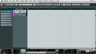 5. The Transport Panel and VST Performance Window