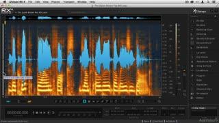 11. Basic Editing & Undo