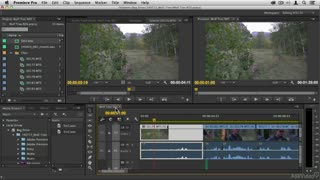 25. Exporting Multiple Scenes