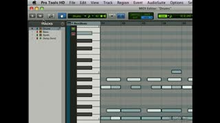 5. MIDI Editing Window 2