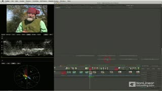 13. Color to FCP