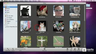 07. Importing Photos from a Camera