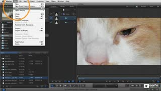 4. Importing Layered Photoshop Files