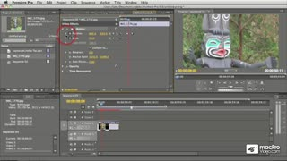 09. Creating Organic Animations