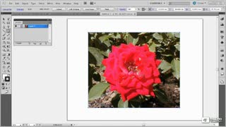 23. Using Clipping Masks