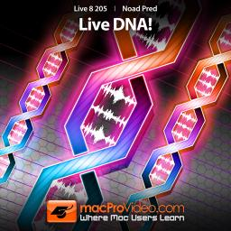 Live 8 205Live DNA! Product Image
