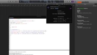 11. SkiSwitcher2 Script & Complex Scripting