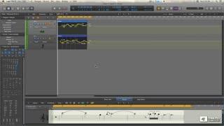 5. Score Editor Window Types