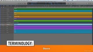 17. Folders & Stems