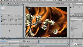 24. Alpha Channels and Rotoscoping Sequenced Stills