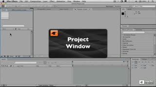 3. The Project Window and File Import