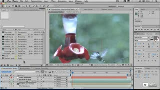 57. Make Movie and Render Settings