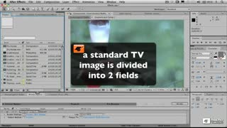 58. Render Settings - About Video Fields