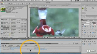 59. Output Modules and Rendering Your Movie