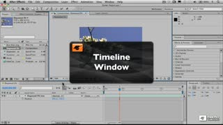 7. The Timeline Window and Working with Layers