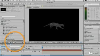 15. Applying the Animated Layer Map