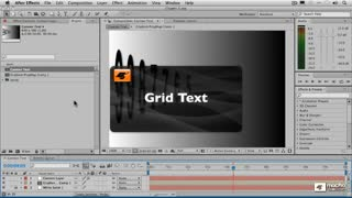 30. Enabling Grid Text