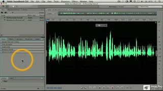 55. Modifying a Voice Track
