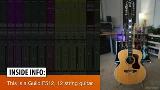 12. Twelve String Guitar