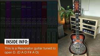 13. Resonator Guitar