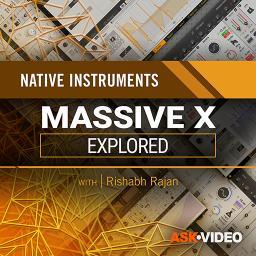Massive X Explored