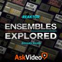 Reaktor 6 103 - Ensembles Explored