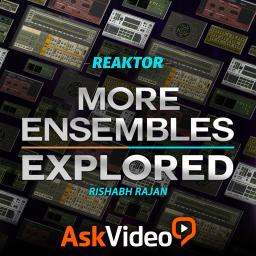 Reaktor 6 104More Ensembles Explored Product Image