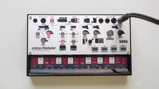 13. Woggle Module