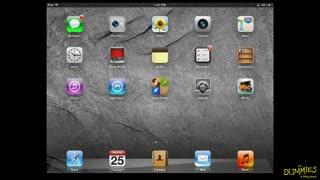 54. Siri
