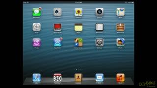 8. iPad Gestures