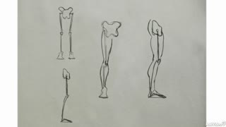 14. The Knees & Feet