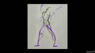 8. Anatomy Basics Intro