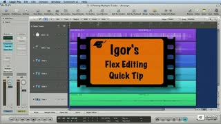 05. Igor's Quick Tip: Flex Enabling Multiple Tracks