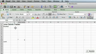 35. Adding Placeholder Data