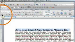 20. Character Formatting Basics - Part 2
